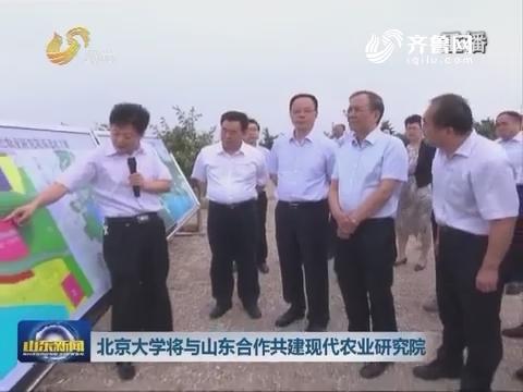 北京大学将与山东合作共建现代农业研究院