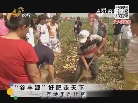 """""""谷丰源""""好肥走天下——土豆地里的比赛"""