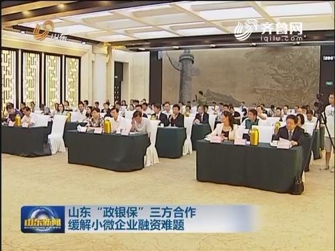 """山东""""政银保""""三方合作缓解小微企业融资难题"""