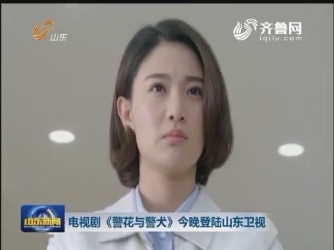 电视剧《警花与警犬》8月1日晚登陆山东卫视