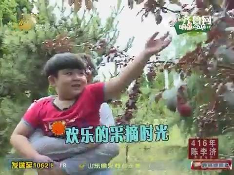 明星宝贝:李鑫丸子果园里的欢乐采摘时光