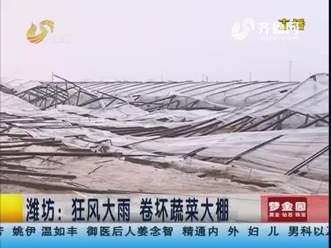 潍坊:狂风大雨 卷坏蔬菜大棚