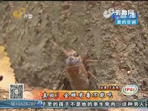 拉呱实验室:真假?金蝉有毒不能吃