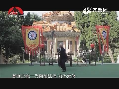 20160814《唐三彩》:鸳鸯门派