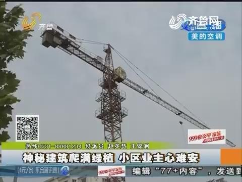 禹城:神秘建筑爬满绿植 小区业主心难安