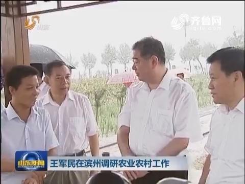 王军民在滨州调研农业农村工作