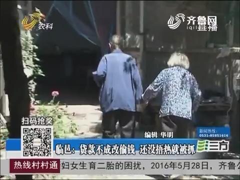临邑:贷款不成改偷钱 还没焐热就被抓