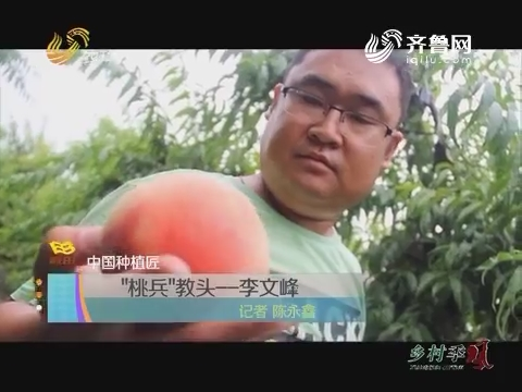 """【中国种植匠】""""桃兵""""教头——李文峰"""