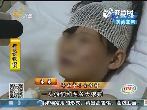 济南:心疼!十岁女孩被恶犬围攻