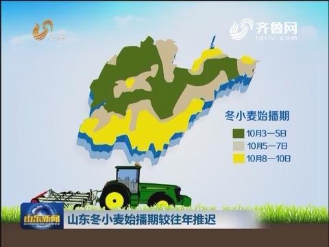 山东冬小麦始播期较往年推迟