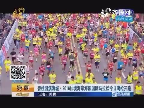 海阳:碧桂园滨海城·2016仙境海岸海阳国际马拉松9月10日鸣枪开跑
