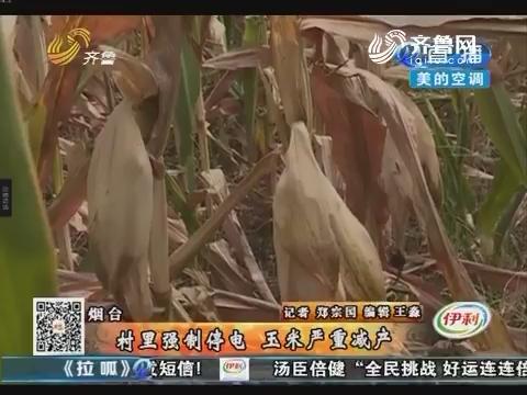 烟台:村里强制停电 玉米严重减产