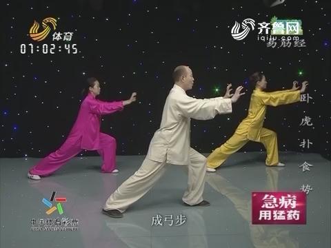 20160913《跟我学》:卧虎扑食势
