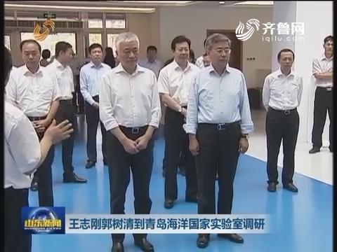 王志刚郭树清到青岛海洋国家实验室调研