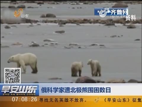 俄科学家遭北极熊围困数日