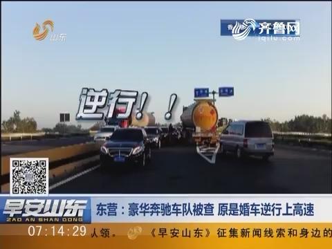 东营:豪华奔驰车队被查 原是婚车逆行上高速