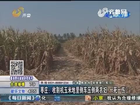 枣庄:收割机玉米地里倒车压倒两农妇 一死一伤