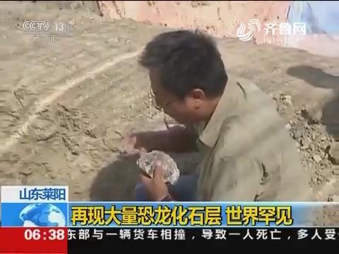 山东莱阳:再现大量恐龙化石层 世界罕见