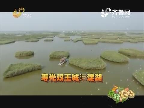 20160925《玩转农场》:走进寿光双王城