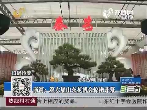 商河:第六届山东花博会惊艳开幕