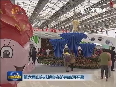 第六届山东花博会在济南商河开幕