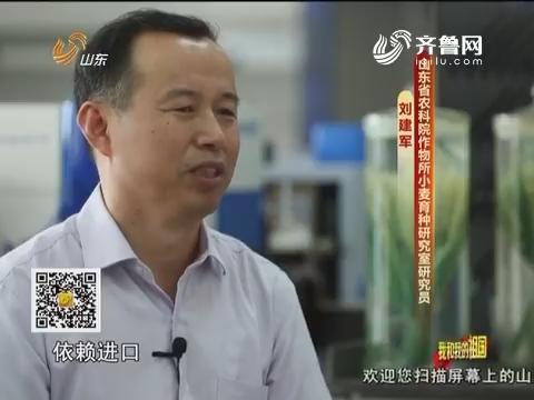 20161003《齐鲁先锋》:党员风采·我和我的祖国 刘建军——育良种 惠百姓