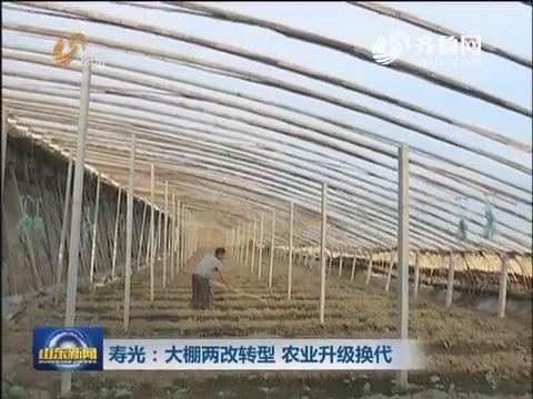 寿光:大棚两改转型 农业升级换代