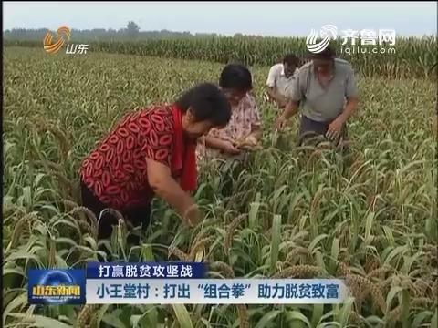 """【打赢脱贫攻坚战】小王堂村:打出""""组合拳"""" 助力脱贫致富"""