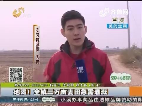 博兴:地渴!全镇三万亩麦田急需灌溉