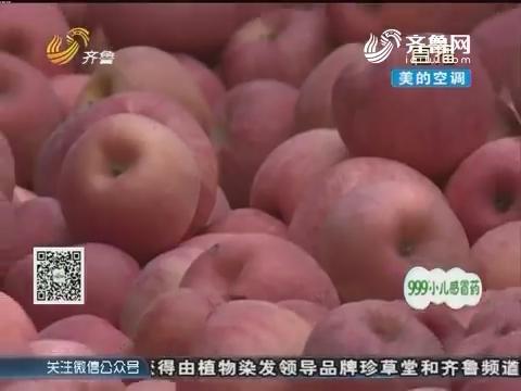 高密:苹果大丰收 销路愁坏人