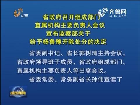 山东省政府召开会议 宣布监察部关于给予杨鲁豫开除处分的决定