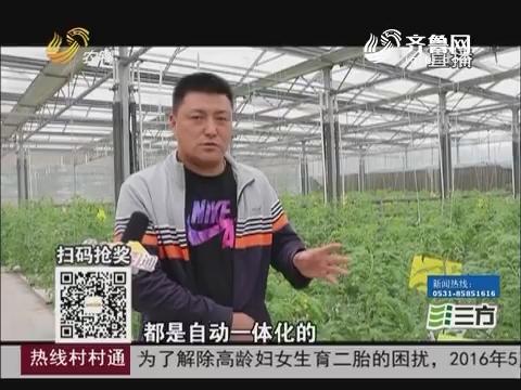 【农业综合开发看东营】东营区:助力企业打造 安全农产品供应链