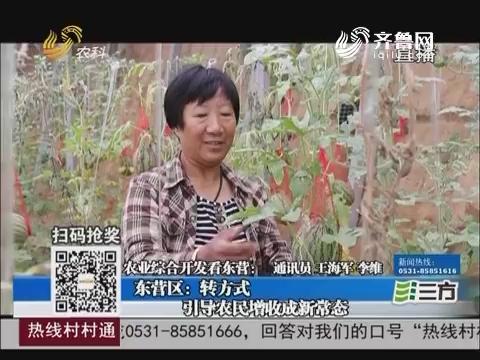 农业综合开发看东营:东营区转方式 引导农民增收成新常态