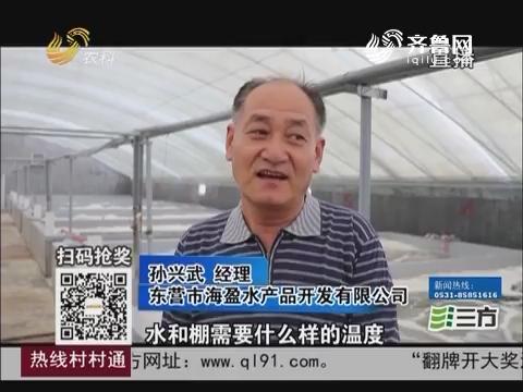 【农业综合开发看东营】垦利:工厂化养虾构建沿海养虾新模式