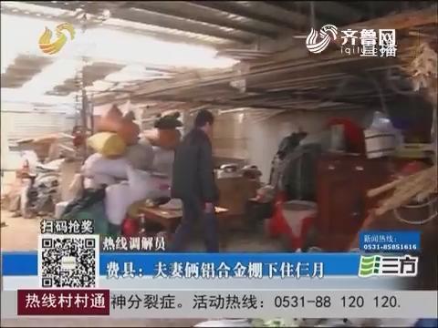 【热线调解员】费县:夫妻俩铝合金棚下住仨月