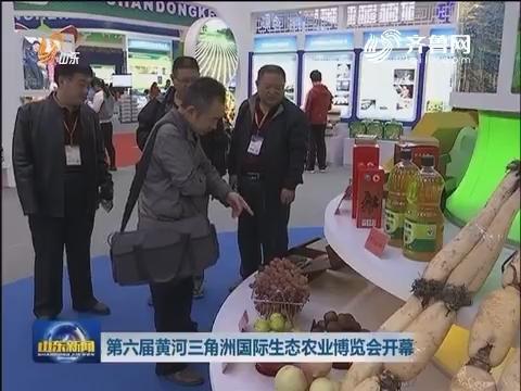 第六届黄河三角洲国际生态农业博览会开幕