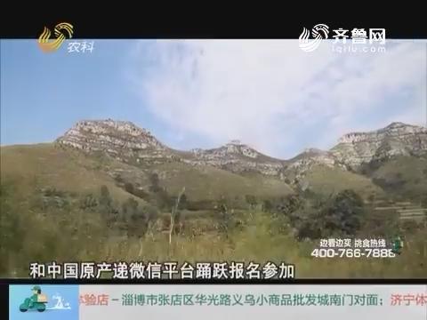 20161022《中国原产递》:青州仰天山国家森林公园自驾游