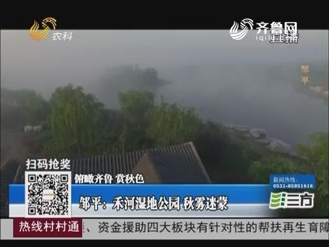 【俯瞰齐鲁 赏秋色】邹平:禾河湿地公园 秋雾迷蒙