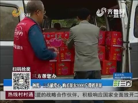 【三方帮您办】栖霞:三方献爱心 购买果农3000斤滞销苹果