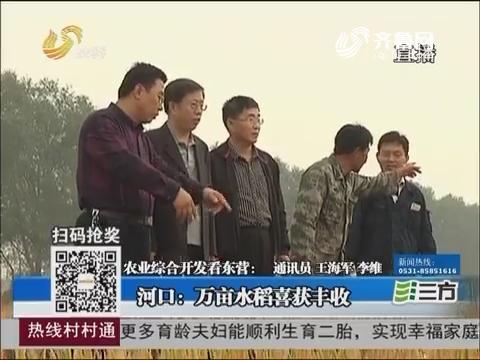 【农业综合开发看东营】河口:万亩水稻喜获丰收