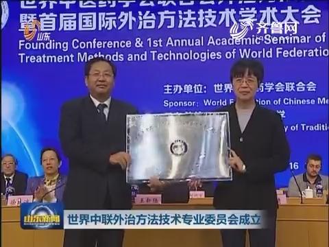 世界中联外治方法技术专业委员会成立