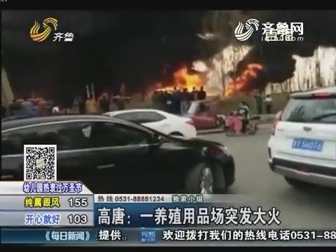 高唐:一养殖用品场突发大火