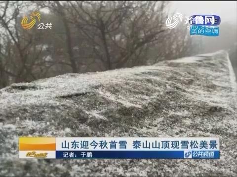 山东迎2016年秋季首雪 泰山山顶现雪松美景