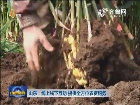 山东:线上线下互动 提供全方位农资服务