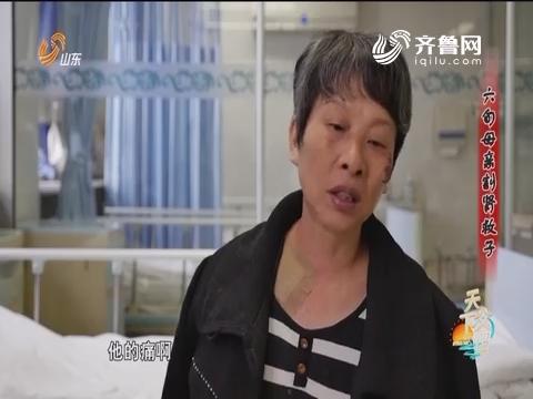 20161106《天下父母》:六旬母亲割肾救子