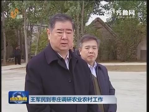 王军民到枣庄调研农业农村工作