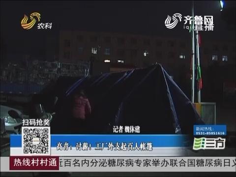 高青:讨薪!工厂外支起百人帐篷
