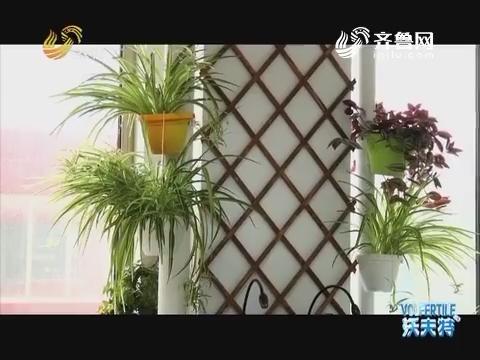 人工智能让植物爬上墙