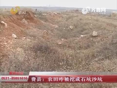 【独家调查】费县:农田咋被挖成石坑沙坑