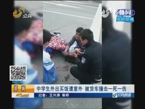 郯城:中学生外出买饭遭意外 被货车撞击一死一伤